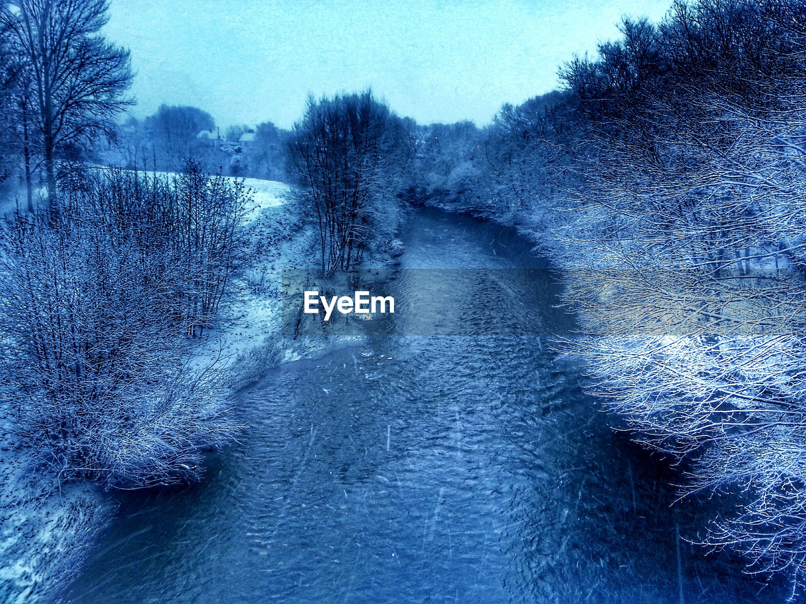 High angle view of stream flowing amidst snow covered bare trees