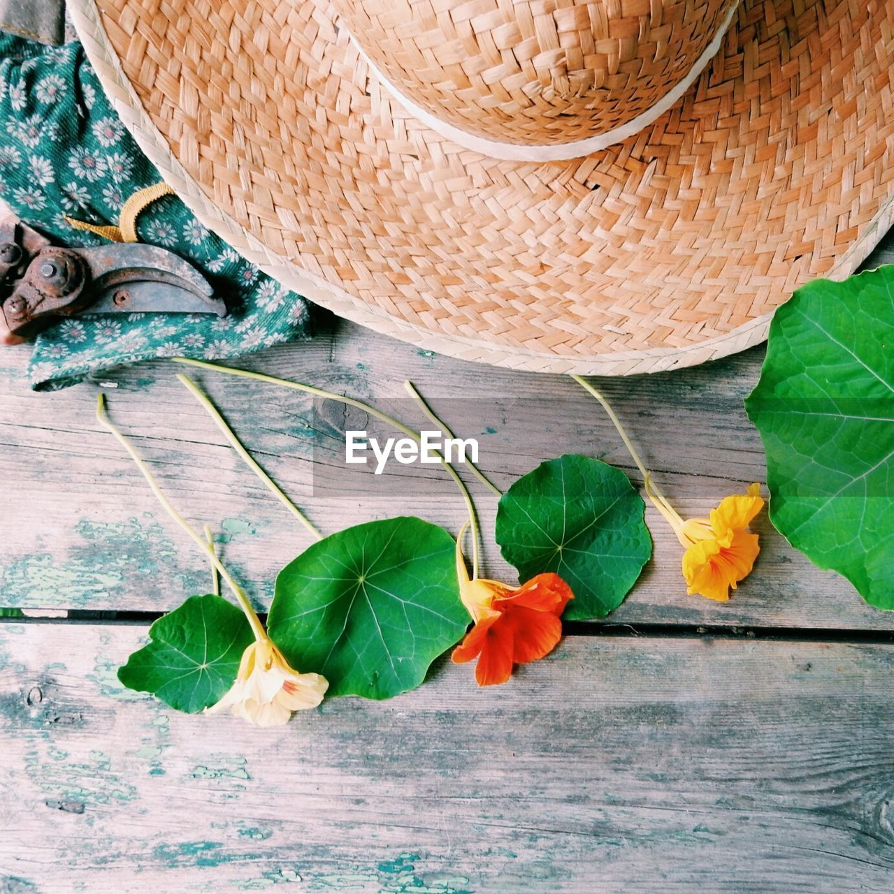 High angle view of flowers and leaves with straw hat on wooden table