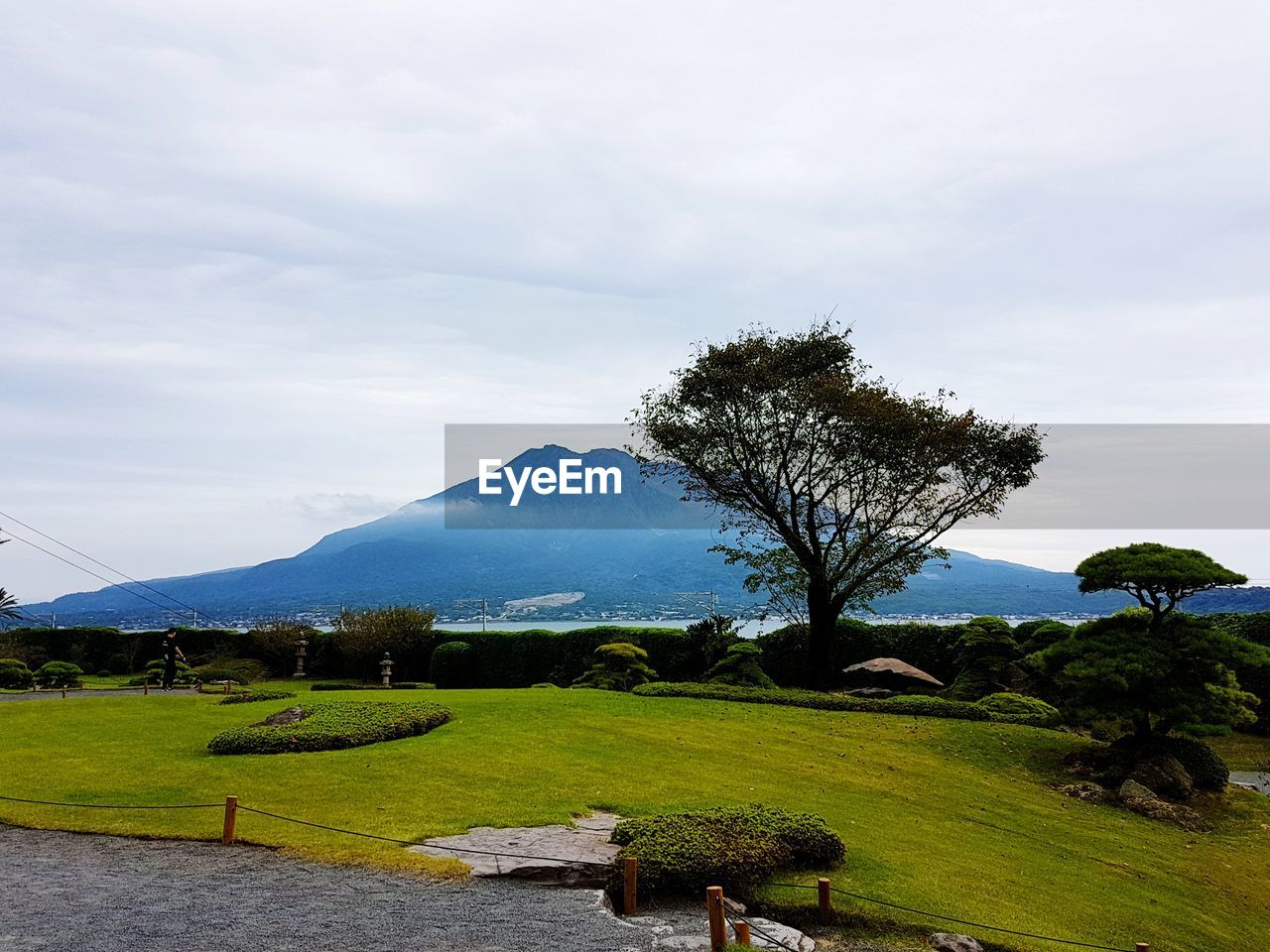 plant, tree, sky, mountain, beauty in nature, tranquil scene, scenics - nature, tranquility, green color, landscape, cloud - sky, growth, environment, nature, grass, non-urban scene, field, day, idyllic, land, no people, mountain range, outdoors, mountain peak