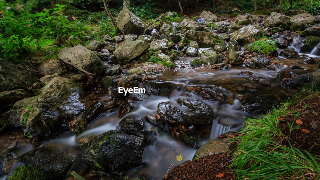 water, motion, waterfall, long exposure, rock - object, flowing water, nature, stream, no people, outdoors, forest, beauty in nature, blurred motion, moss, stream - flowing water, scenics, tranquility, day, tree