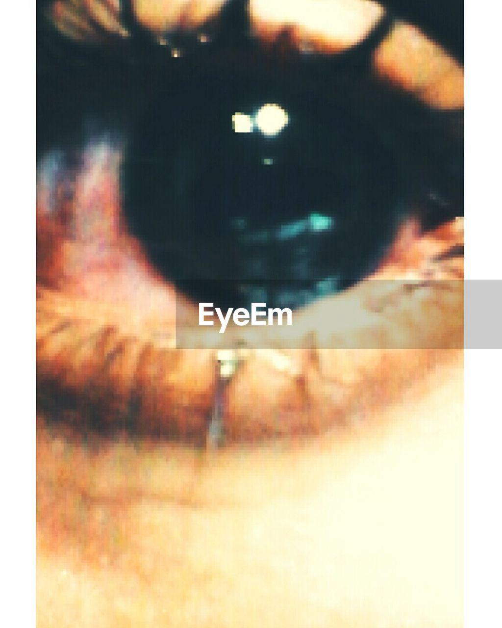 one person, close-up, real people, full frame, backgrounds, human eye, human body part, eyesight, outdoors, eyelash, day, eyeball, people