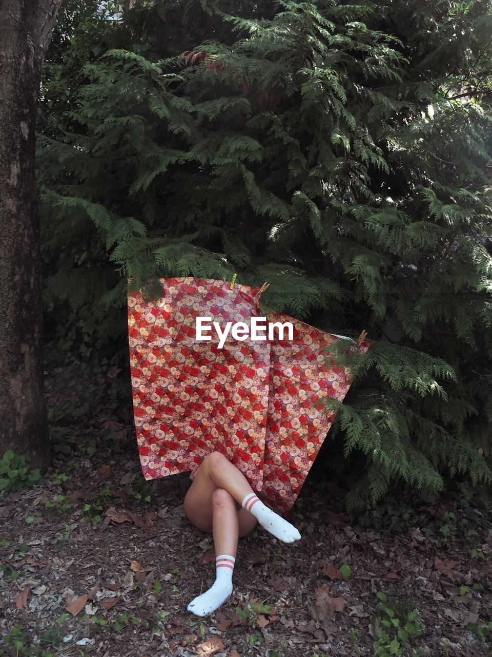 Woman hiding by trees in forest