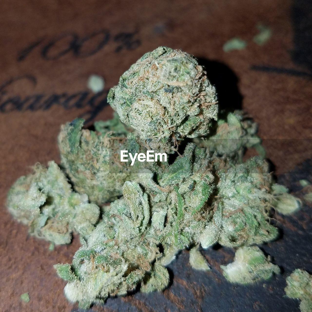 marijuana - herbal cannabis, close-up, table, cannabis plant, no people, indoors, day