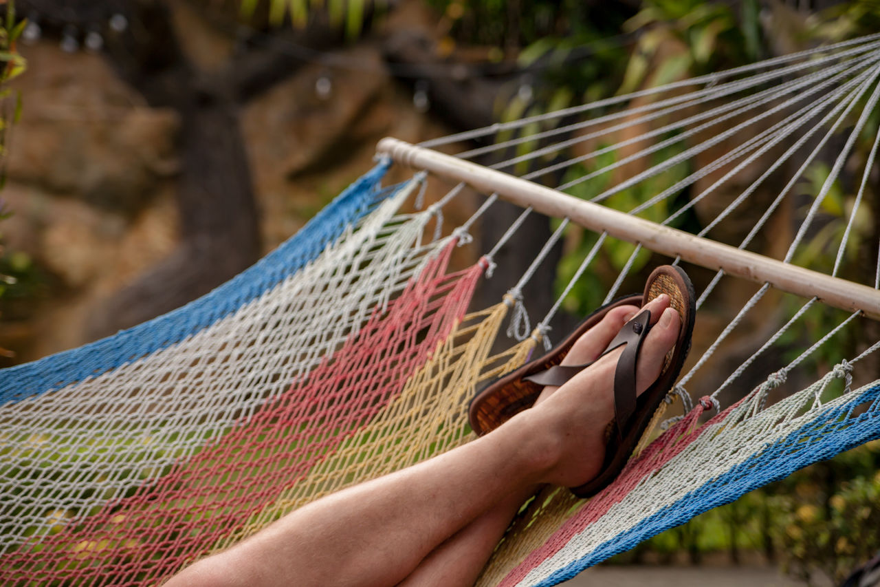 real people, hammock, one person, focus on foreground, hand, day, human body part, lifestyles, human hand, body part, one animal, nature, unrecognizable person, outdoors, textile, leisure activity, animal wildlife, holding, close-up, finger, human foot, human limb