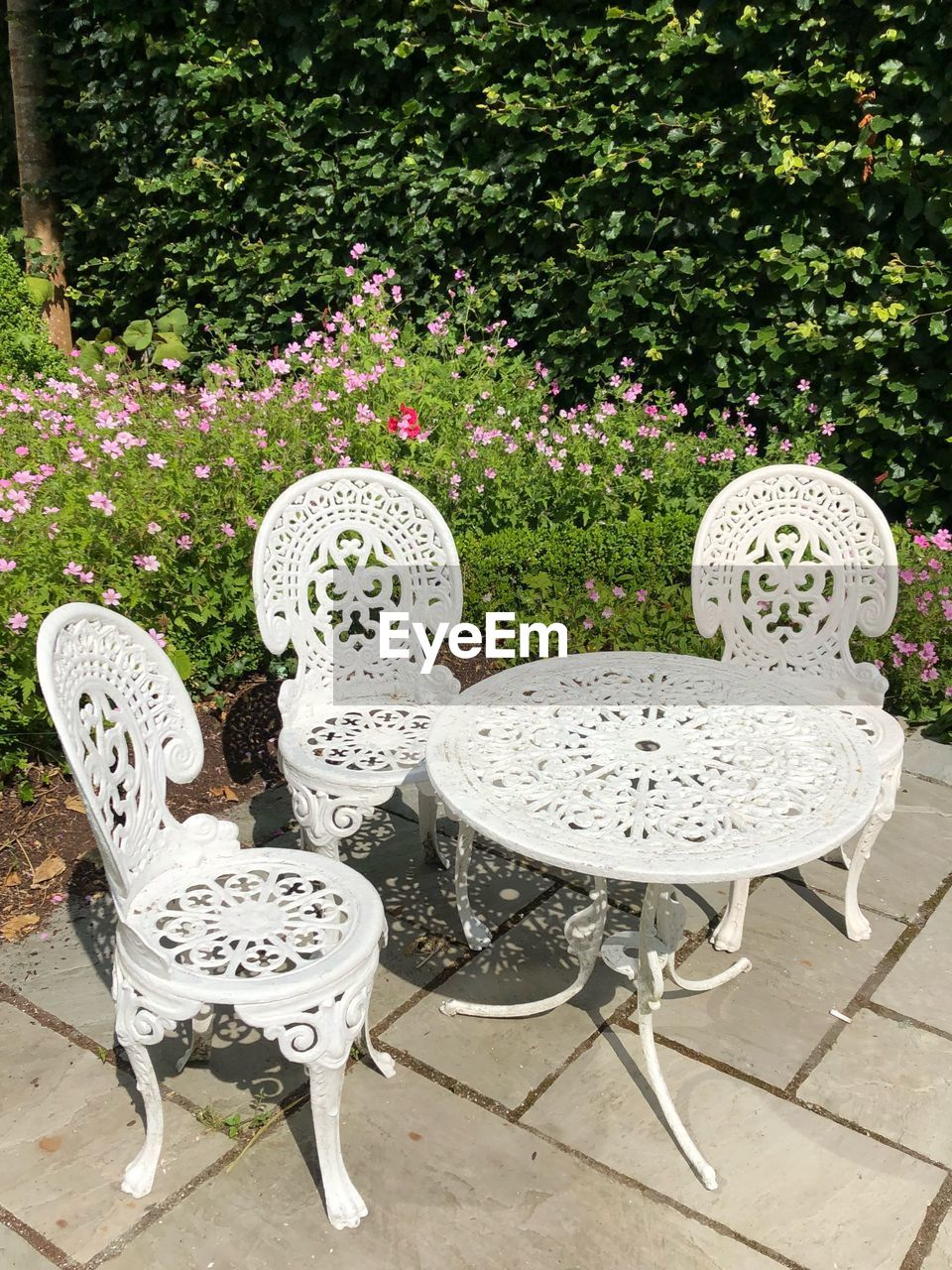 plant, seat, chair, nature, table, flower, no people, day, white color, grass, flowering plant, front or back yard, absence, beauty in nature, outdoors, garden, pattern, formal garden, decoration, park, ornamental garden