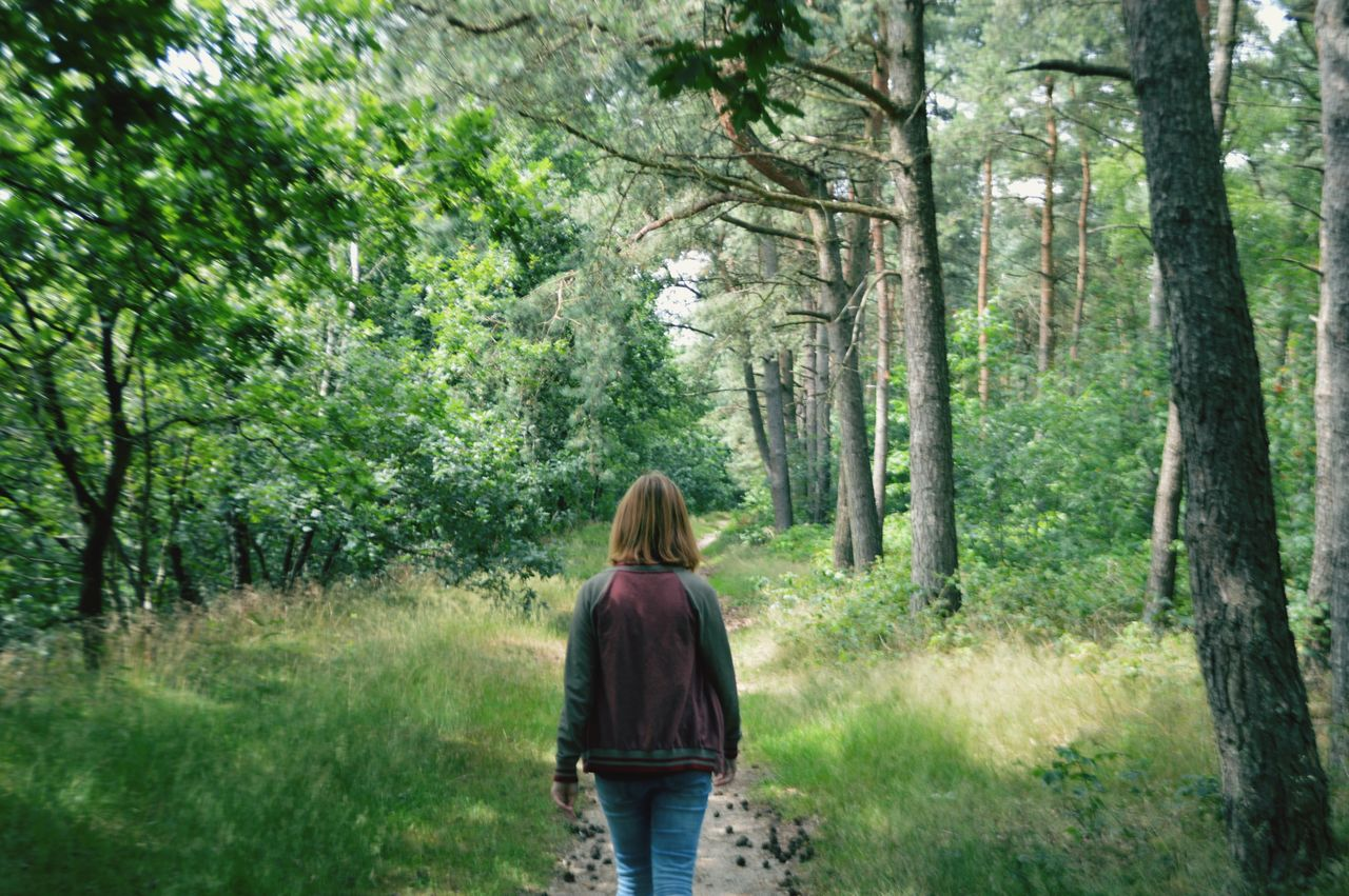 Rear View Of Woman Walking By Trees At Hoge Veluwe National Park