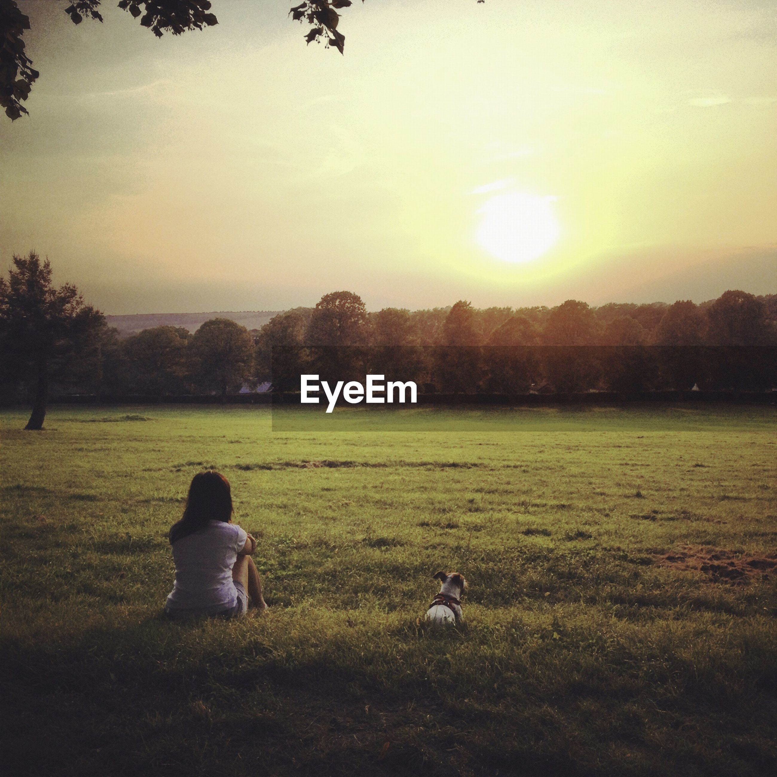 Rear view of woman with dog sitting on grassy field against sky during sunset