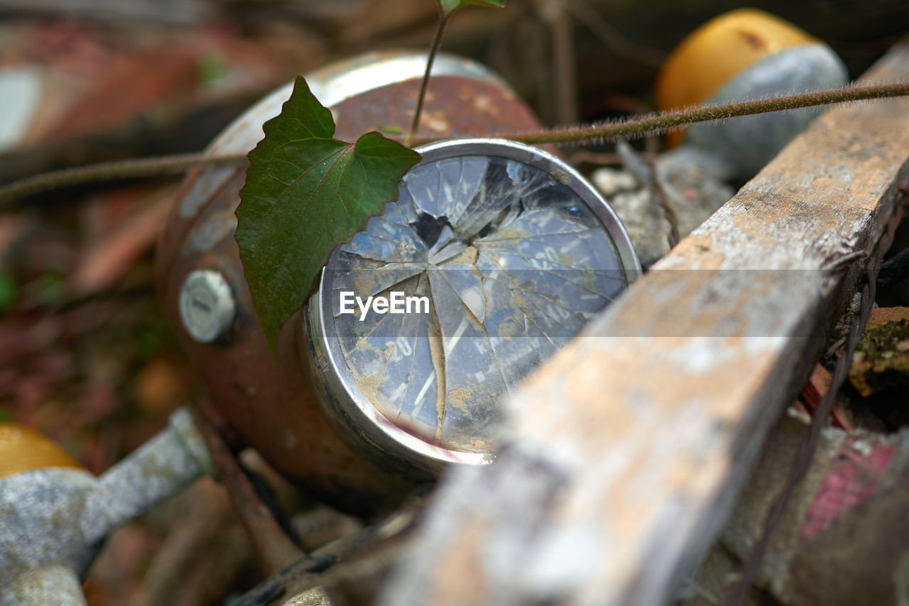 selective focus, close-up, no people, leaf, nature, plant part, day, time, wood - material, outdoors, metal, damaged, old, plant, abandoned, clock, high angle view, still life, instrument of time, silver colored