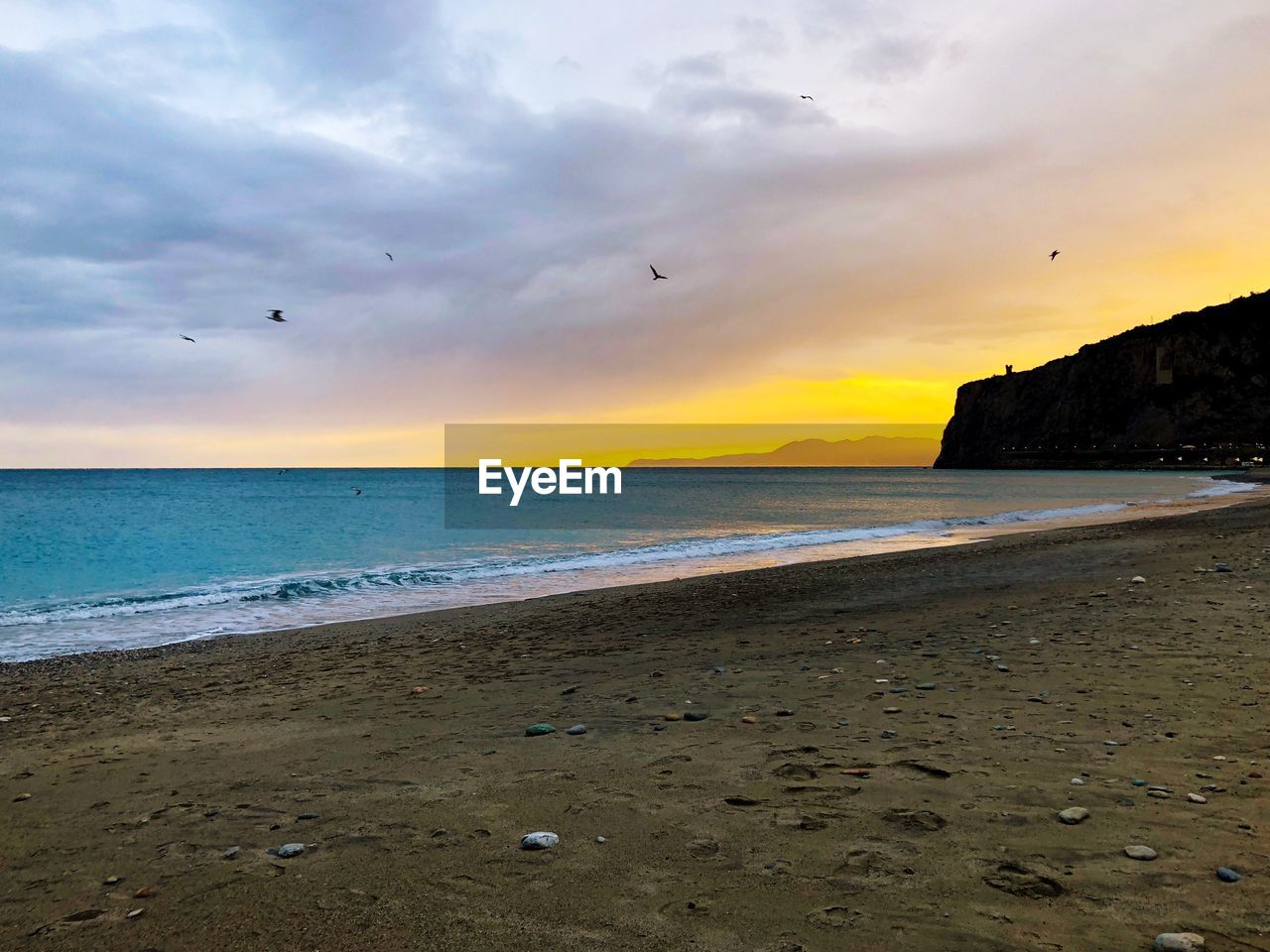 water, sea, beach, sky, land, cloud - sky, sand, beauty in nature, horizon, sunset, horizon over water, scenics - nature, tranquility, tranquil scene, nature, idyllic, bird, no people, outdoors