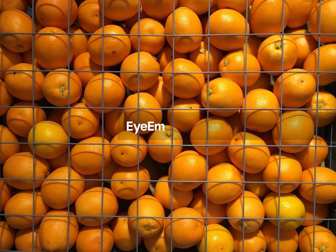 Close-Up Of Oranges On Display