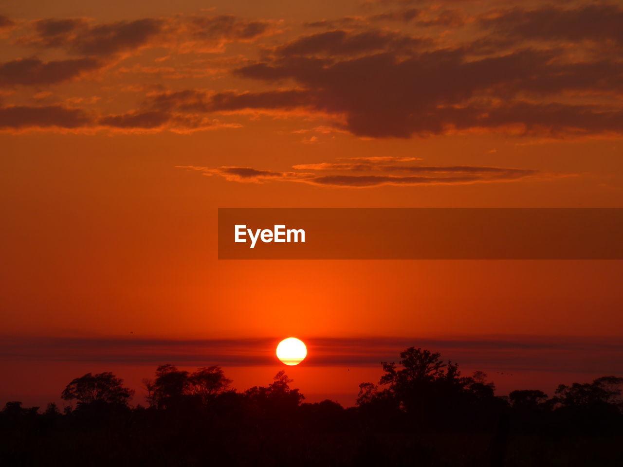 sky, beauty in nature, sunset, scenics - nature, tranquility, tranquil scene, orange color, cloud - sky, silhouette, sun, tree, idyllic, nature, plant, no people, outdoors, non-urban scene, sea, sunlight, water, romantic sky, eclipse