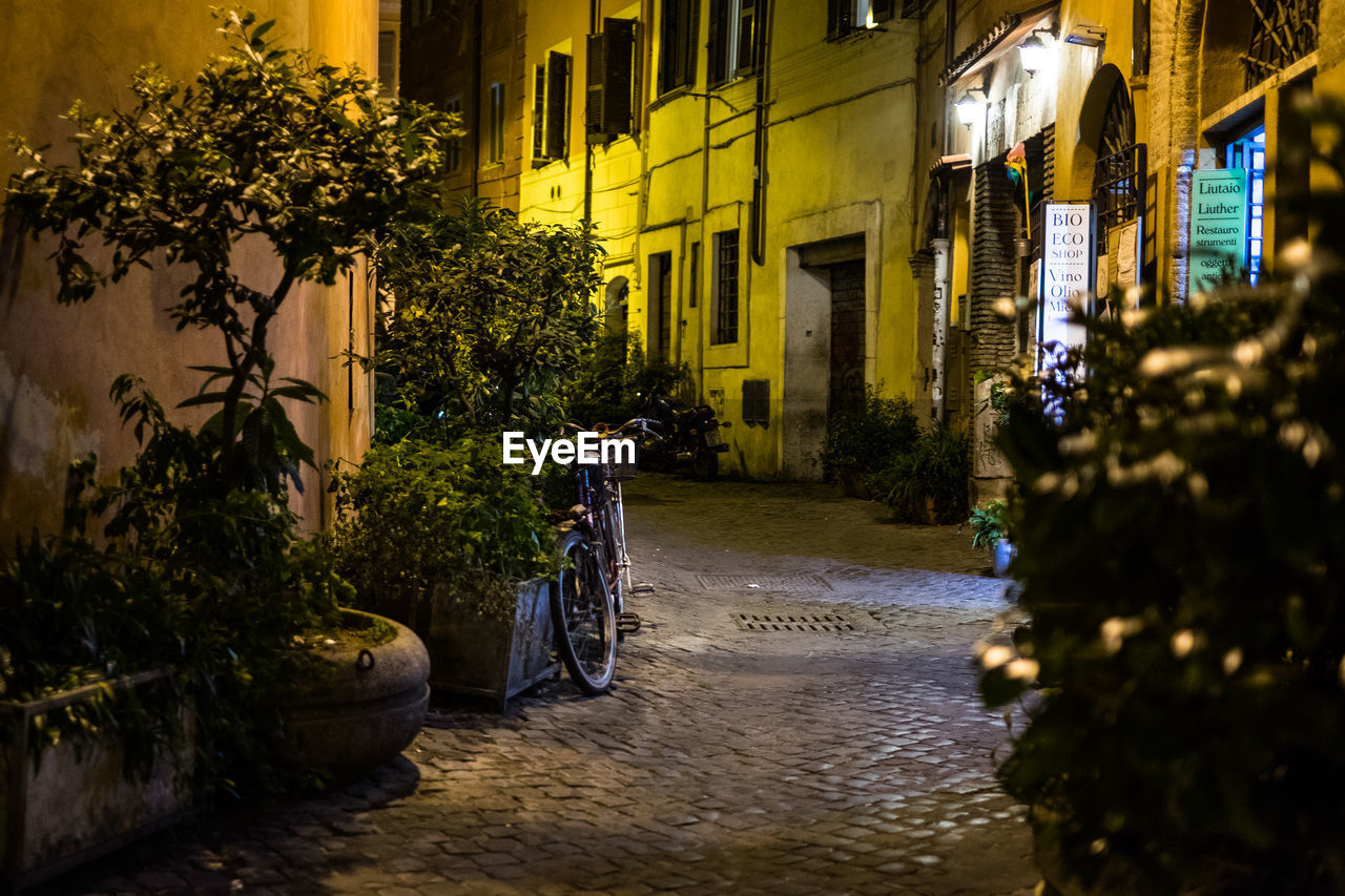 architecture, building exterior, built structure, residential building, street, plant, outdoors, alley, bicycle, transportation, no people, city, night, nature