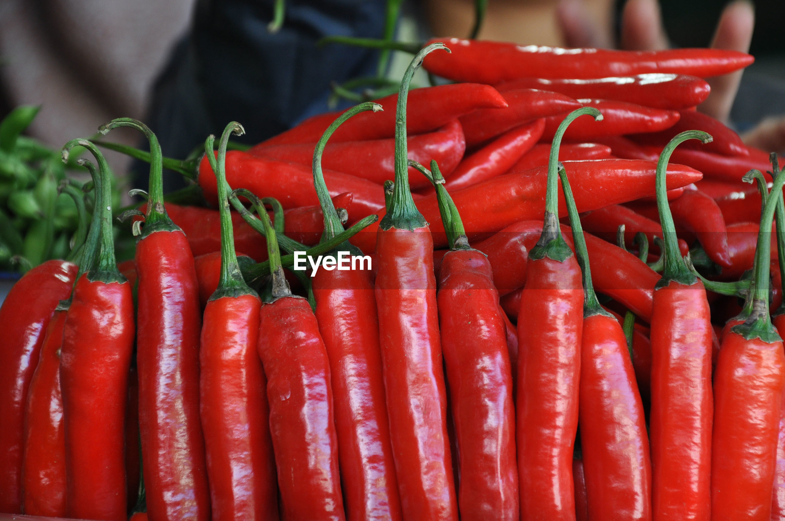 CLOSE-UP OF RED CHILI PEPPERS AT MARKET STALL