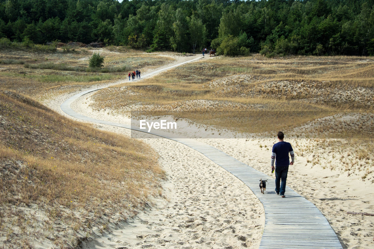 Rear View Of Man Walking With Dog On Boardwalk