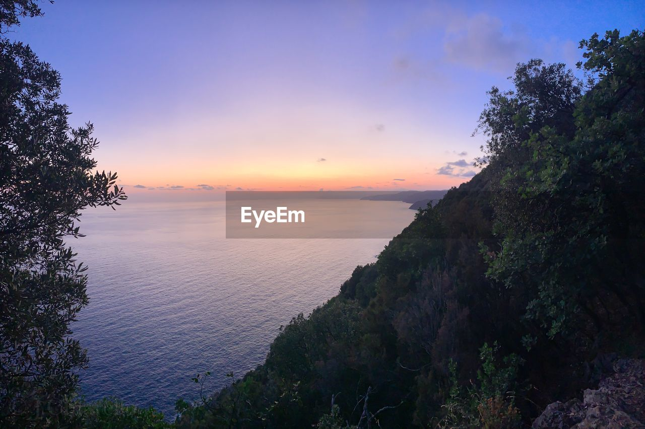 sunset, sky, beauty in nature, scenics - nature, tranquil scene, tranquility, tree, water, plant, nature, non-urban scene, sea, idyllic, orange color, no people, cloud - sky, growth, outdoors, horizon, horizon over water
