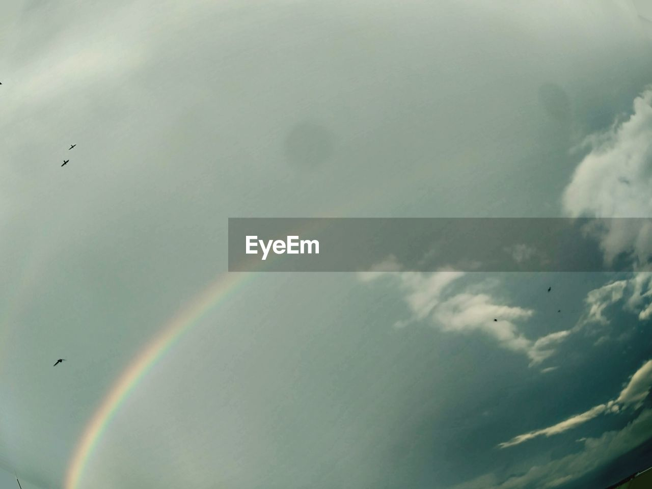 rainbow, flying, double rainbow, no people, cloud - sky, day, sky, nature, outdoors, multi colored, scenics, beauty in nature