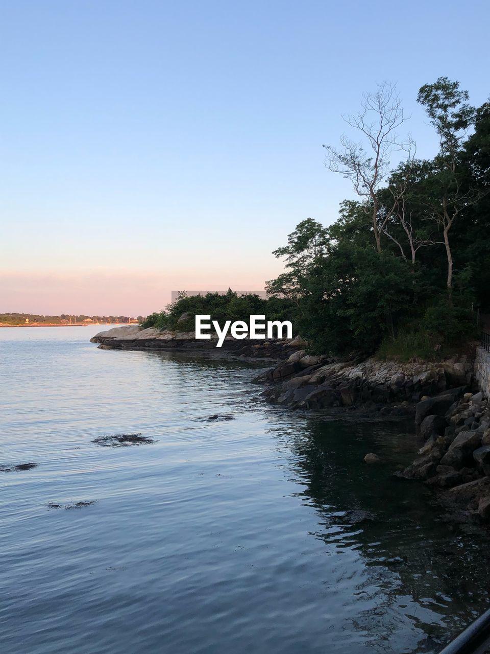 water, sky, tree, tranquility, scenics - nature, beauty in nature, clear sky, plant, tranquil scene, nature, no people, sunset, waterfront, sea, non-urban scene, outdoors, idyllic, reflection