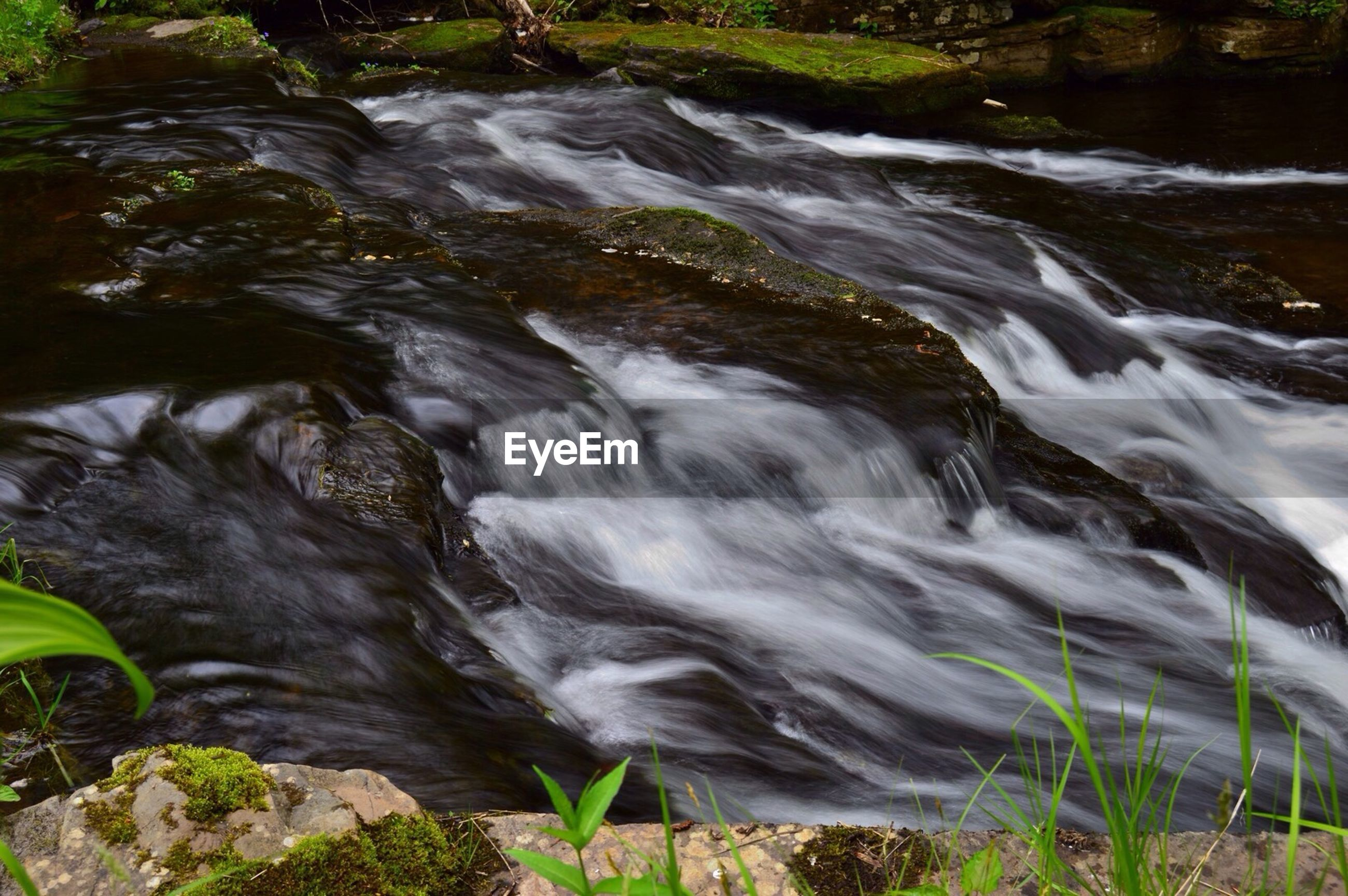 water, motion, flowing water, waterfall, long exposure, flowing, forest, nature, beauty in nature, stream, rock - object, blurred motion, scenics, surf, river, plant, day, outdoors, no people, high angle view
