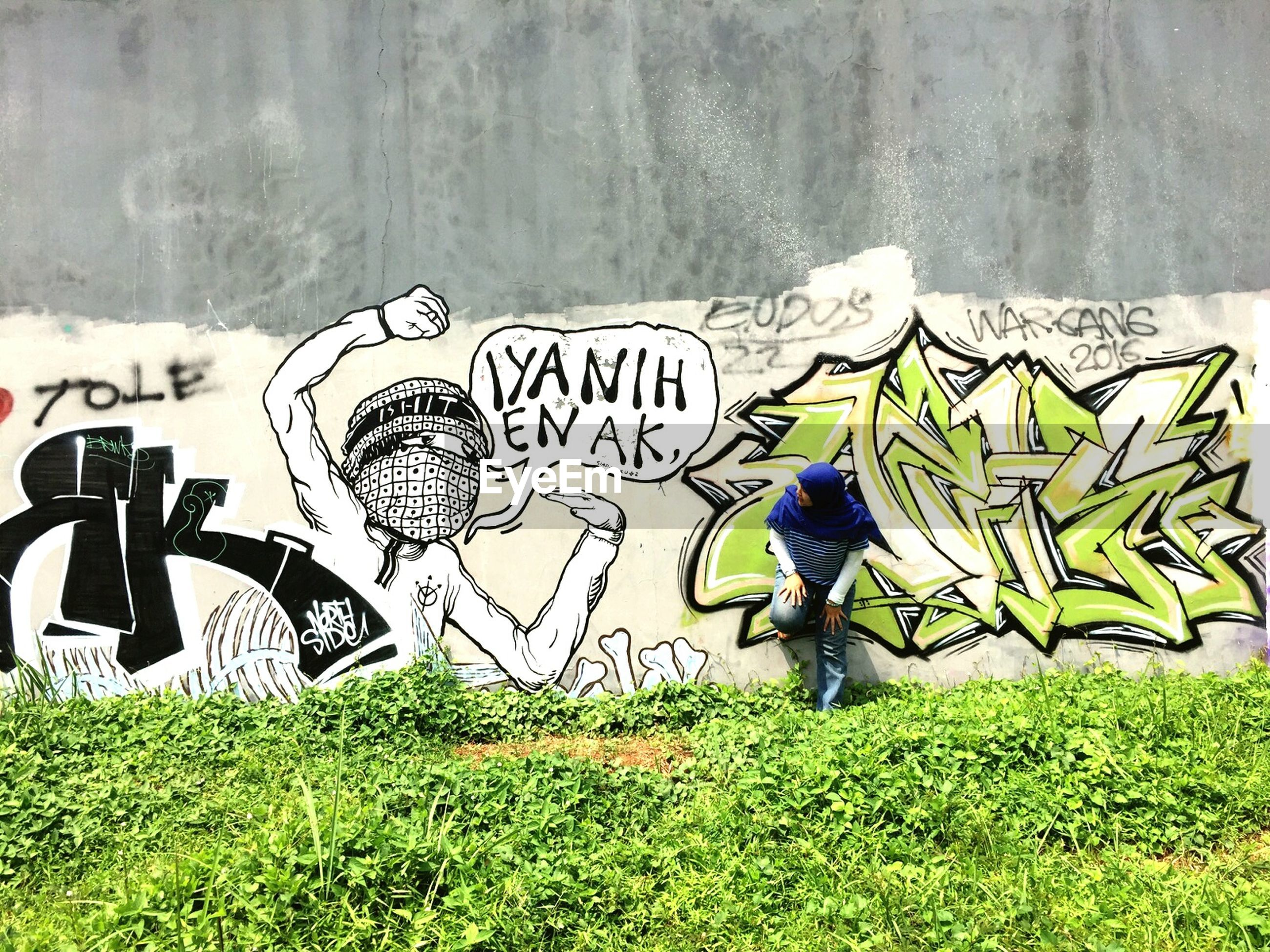 art, art and craft, creativity, graffiti, human representation, grass, animal representation, sculpture, statue, wall - building feature, text, day, field, outdoors, green color, craft, western script, street art
