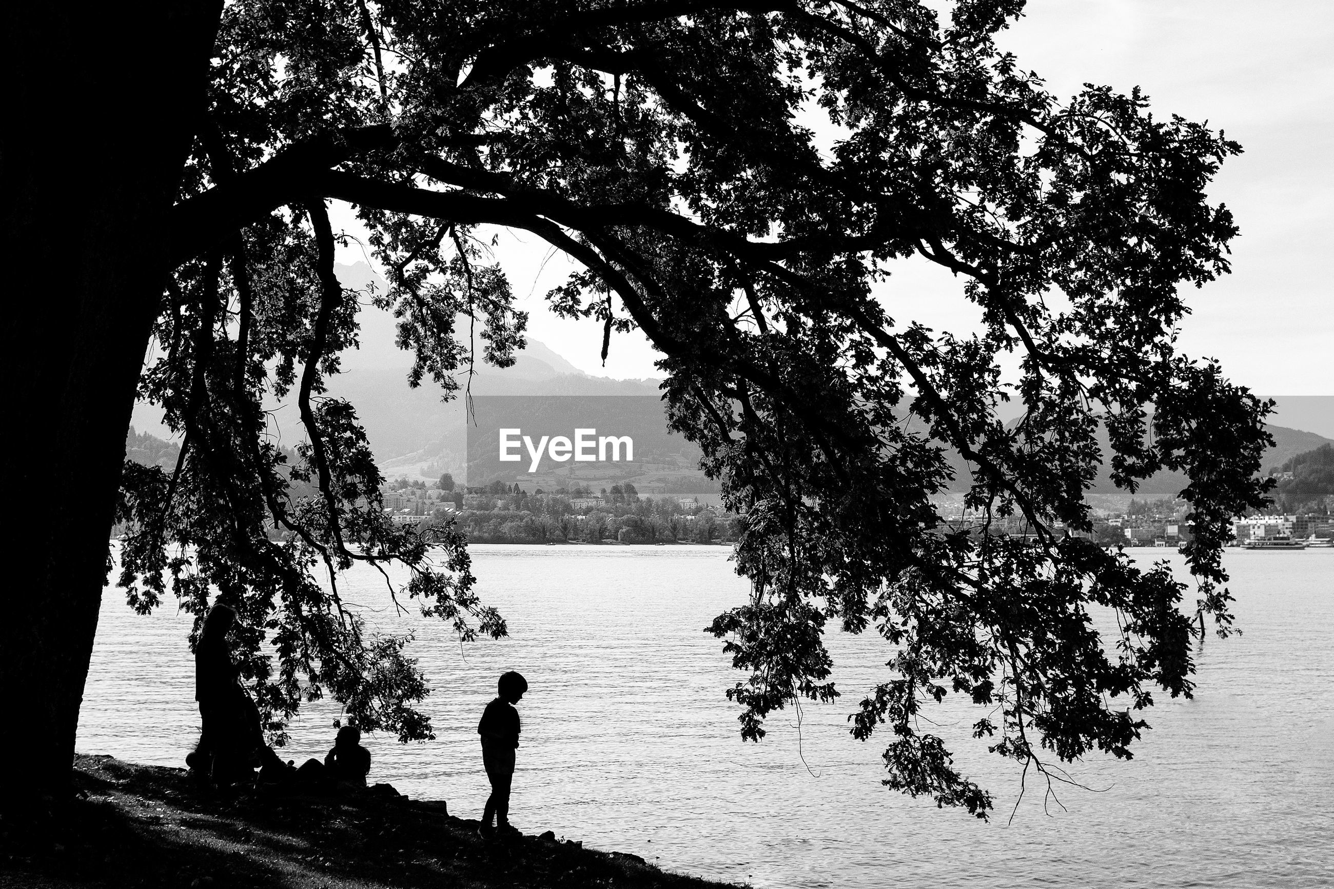 SILHOUETTE MAN STANDING BY TREE AGAINST LAKE