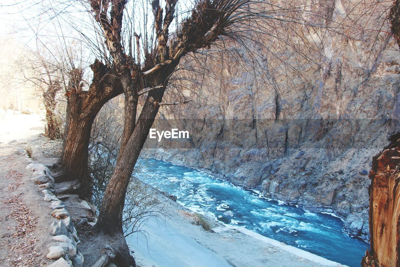 bare tree, nature, tree, day, beauty in nature, branch, scenics, no people, outdoors, tranquility, winter, snow, water, sky