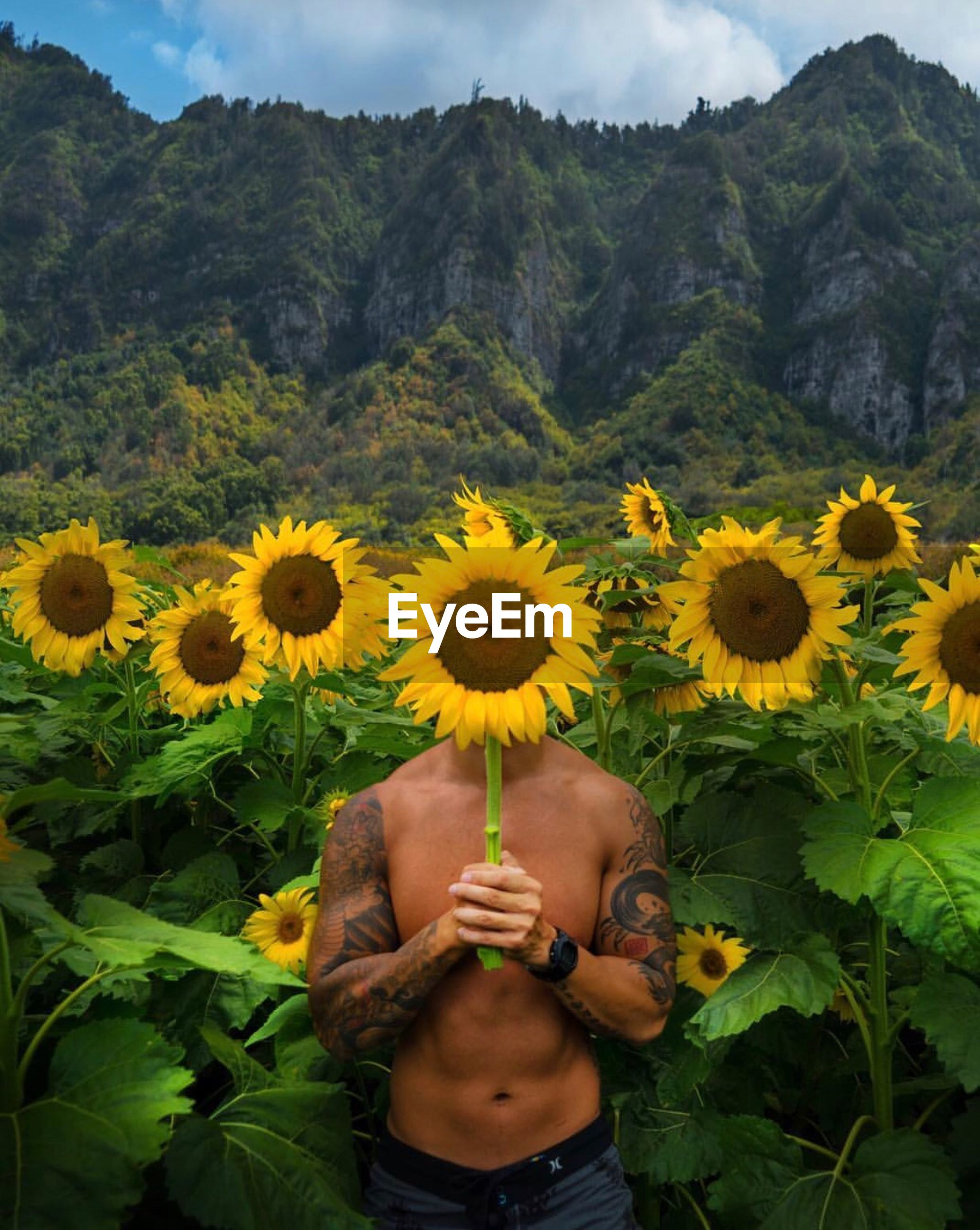 yellow, one person, real people, flower, human hand, holding, nature, freshness, human body part, beauty in nature, lifestyles, growth, leisure activity, field, outdoors, day, plant, women, fragility, mountain, flower head, close-up, adult, people