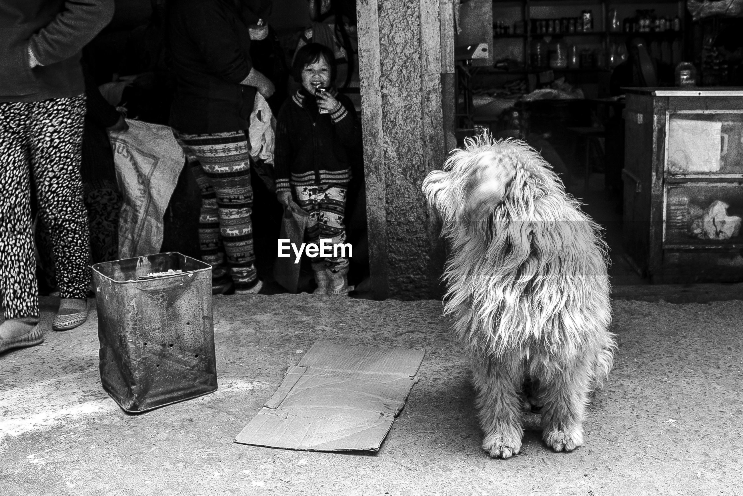 REAR VIEW OF WOMAN WITH DOG STANDING ON FLOOR
