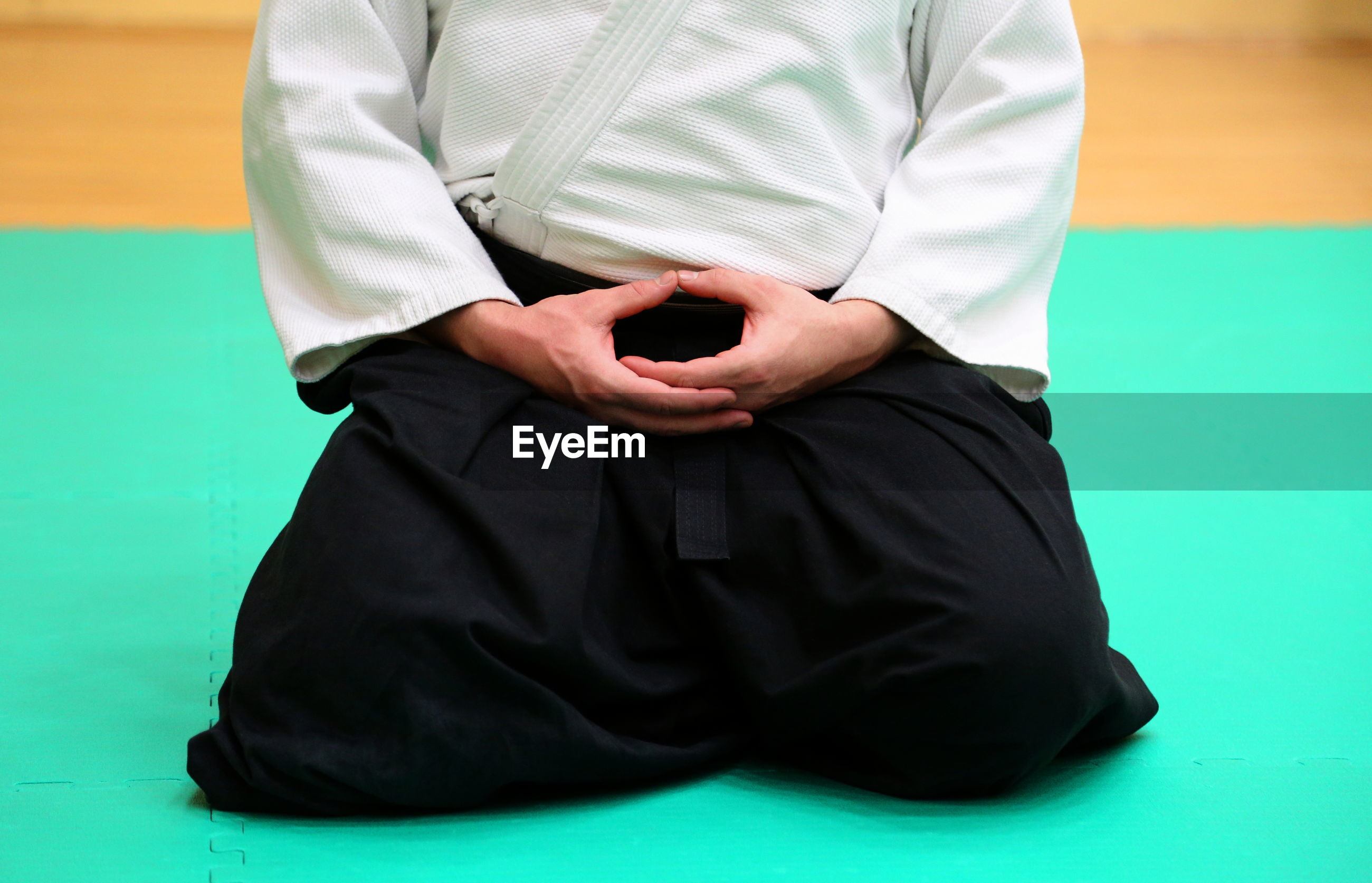 Midsection of man practicing aikido in dojo