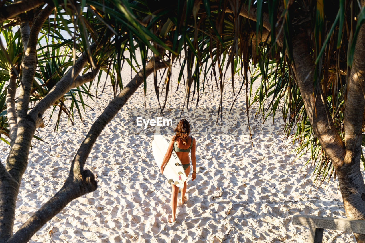 tree, one person, land, plant, full length, nature, swimwear, beach, tropical climate, bikini, sunlight, young adult, adult, leisure activity, day, sand, holiday, vacations, clothing, trip, outdoors, beautiful woman