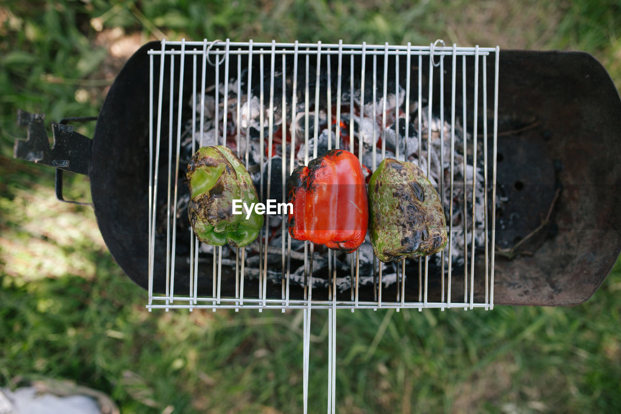 barbecue, food, food and drink, barbecue grill, vegetable, freshness, day, grilled, close-up, nature, meat, metal, preparation, healthy eating, no people, heat - temperature, wellbeing, outdoors, high angle view, grass, preparing food
