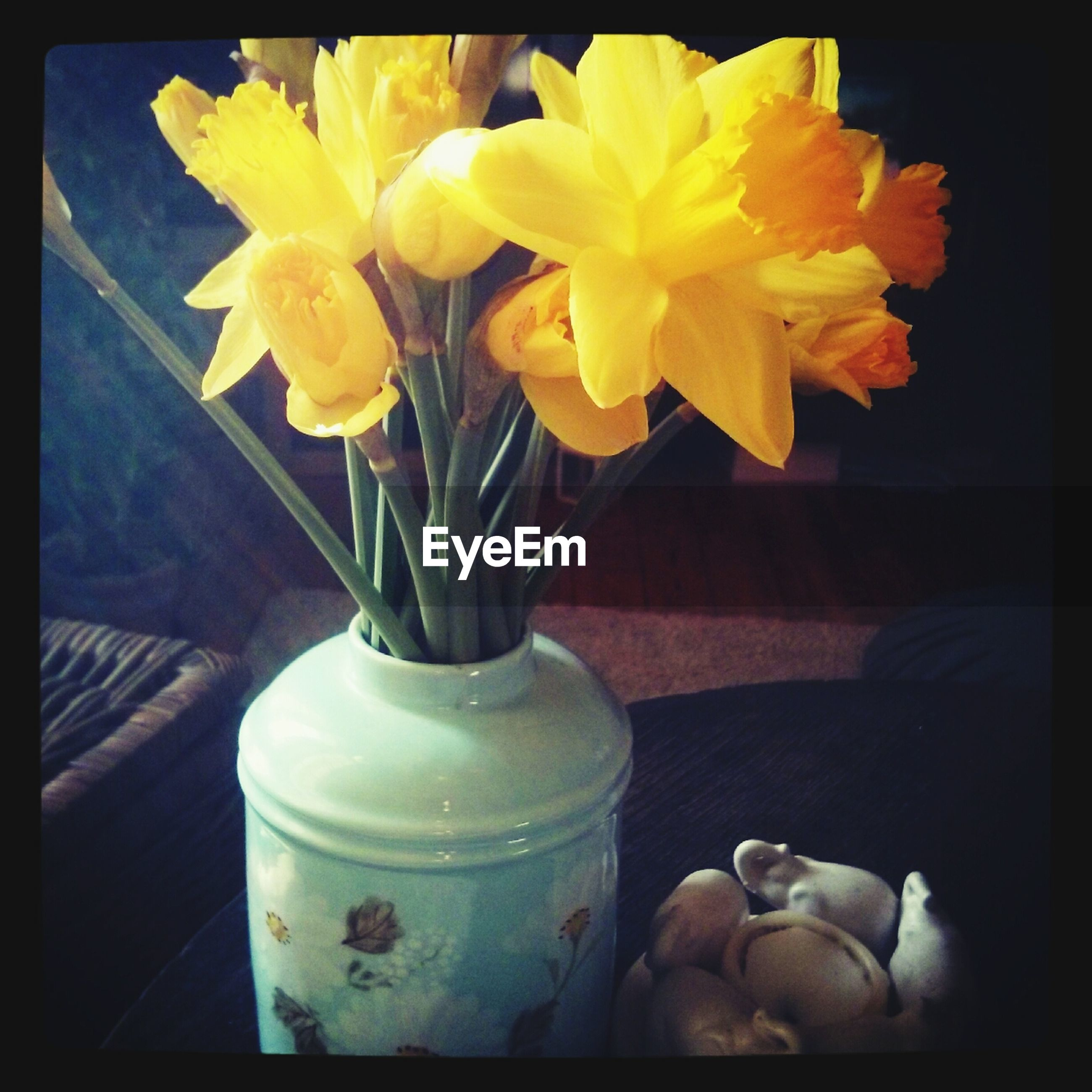 transfer print, flower, auto post production filter, freshness, petal, flower head, fragility, vase, indoors, yellow, close-up, table, plant, growth, high angle view, potted plant, beauty in nature, nature, leaf, blooming