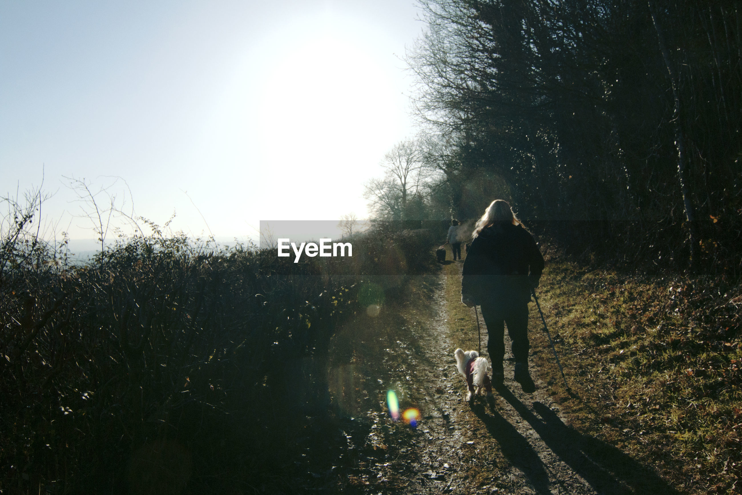 REAR VIEW OF WOMAN WITH DOG WALKING ON FIELD AGAINST SKY