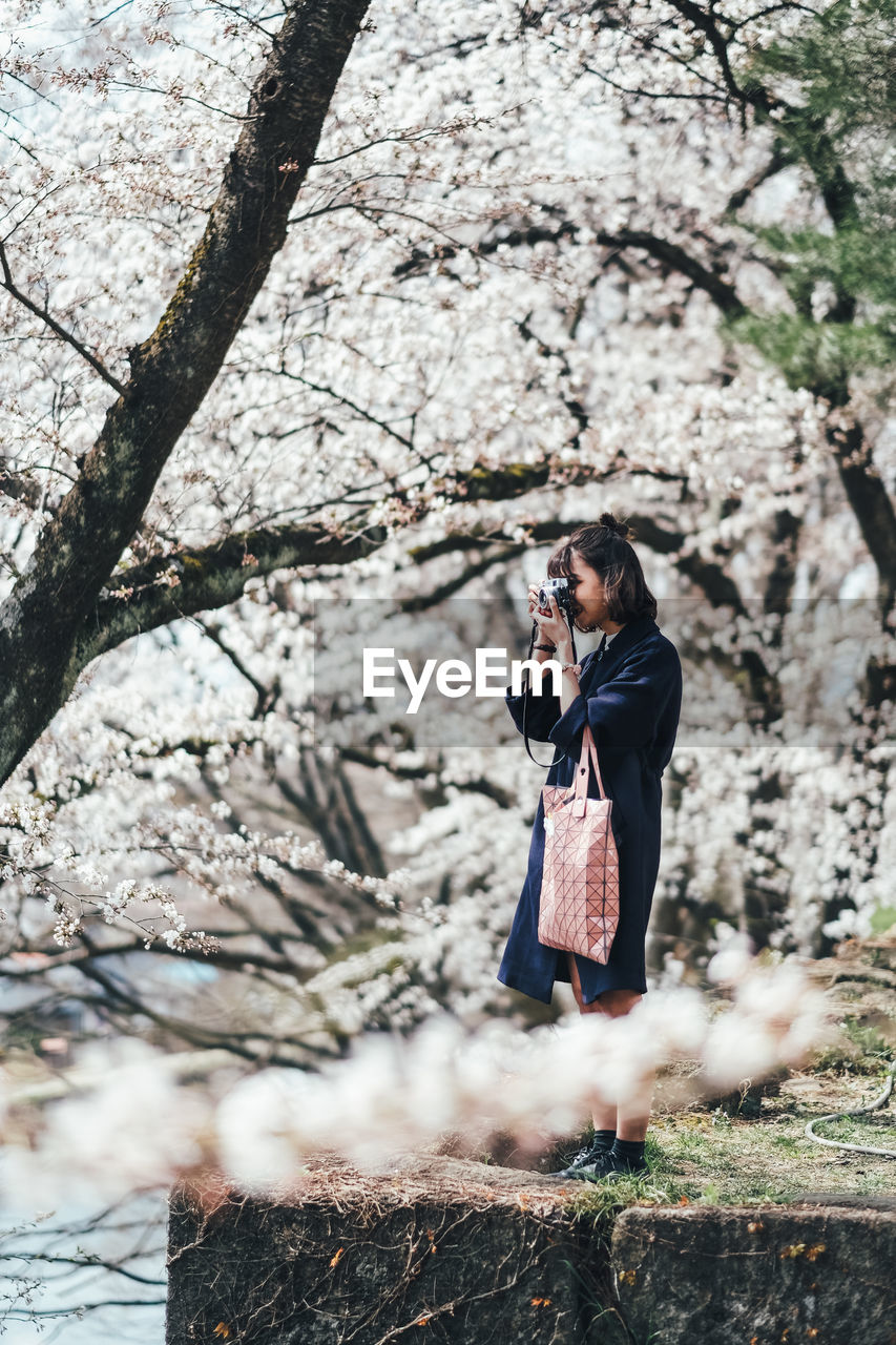 Woman Clicking Photos While Standing Against Cherry Blossom Trees