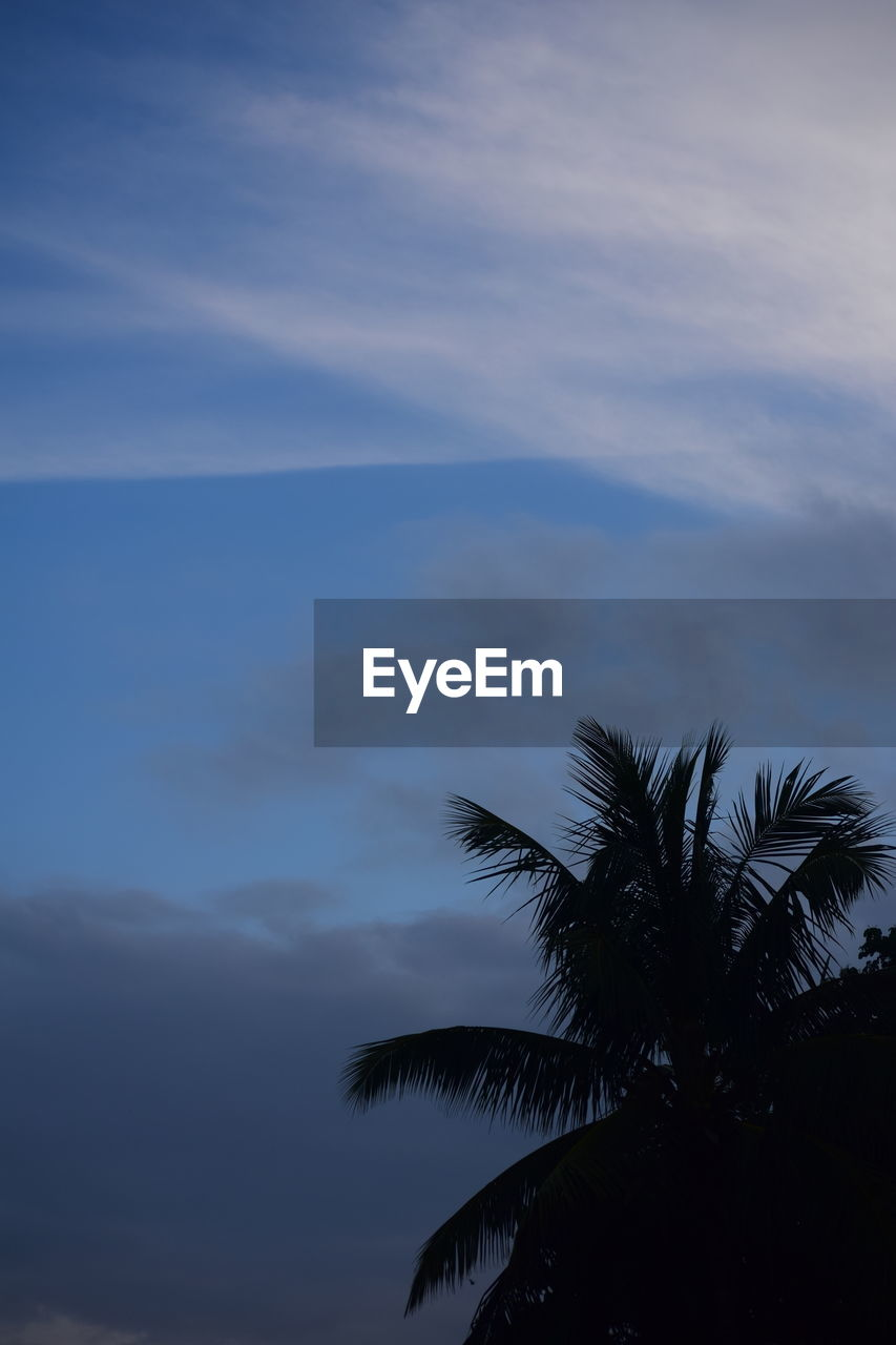 sky, cloud - sky, beauty in nature, scenics - nature, tree, palm tree, tranquility, tranquil scene, tropical climate, silhouette, plant, nature, no people, sea, water, sunset, horizon over water, idyllic, non-urban scene, outdoors, palm leaf, coconut palm tree