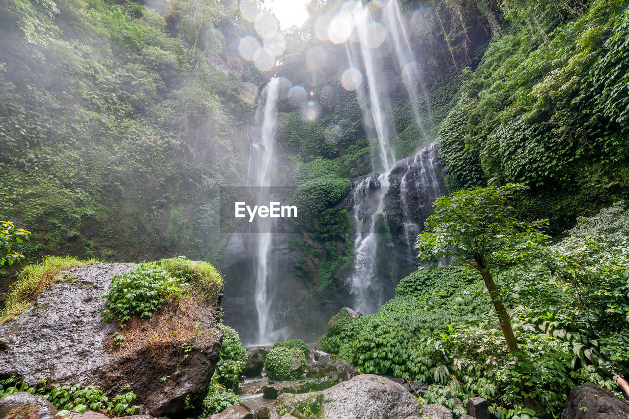 scenics - nature, waterfall, plant, tree, beauty in nature, forest, rock, land, long exposure, water, rock - object, flowing water, nature, motion, solid, environment, non-urban scene, green color, blurred motion, no people, outdoors, rainforest, power in nature, flowing, falling water