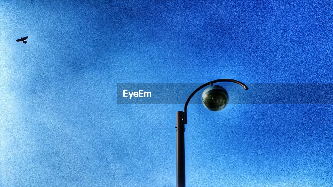 low angle view, blue, no people, street light, day, outdoors, sky, architecture, bird