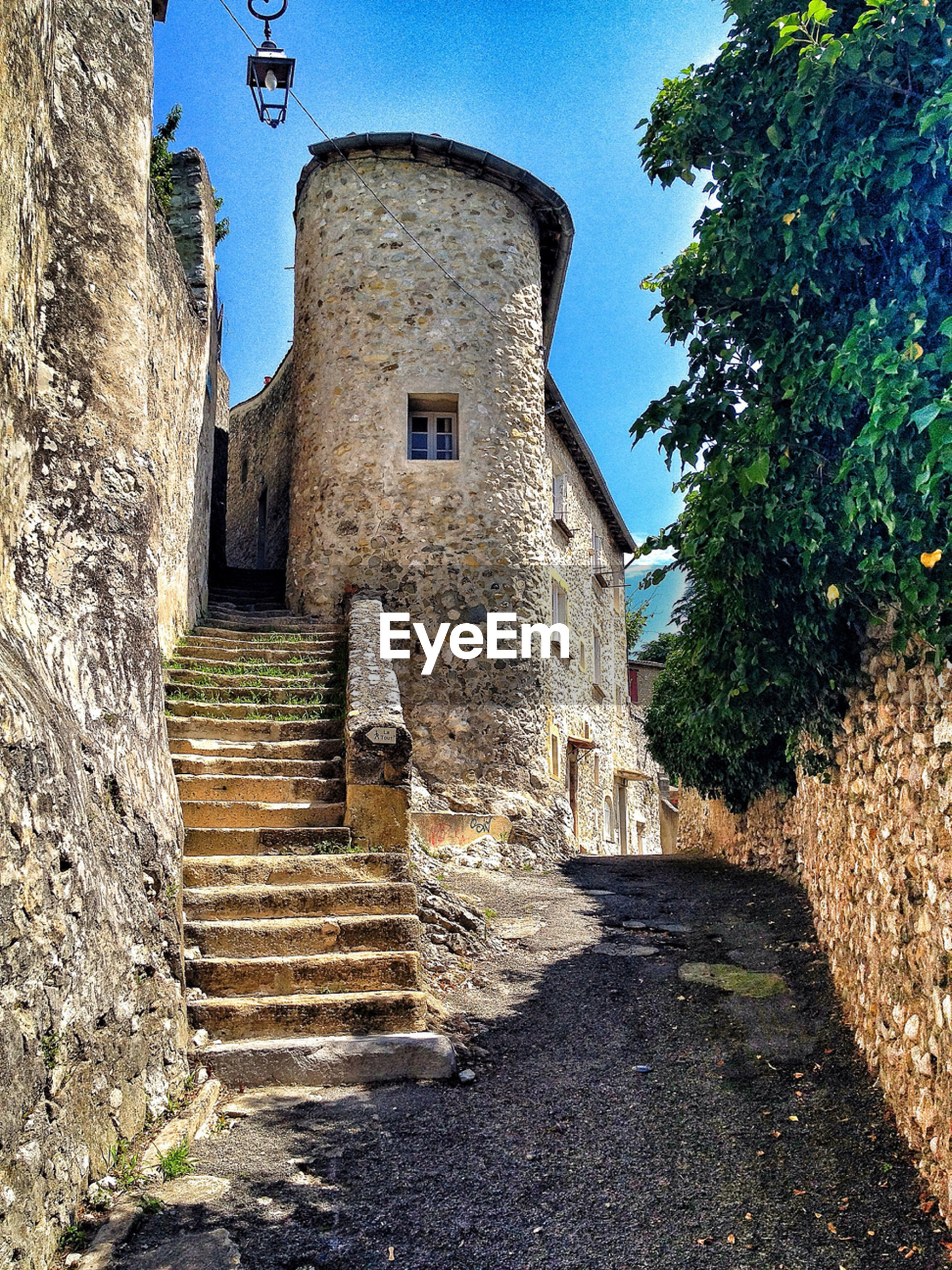 architecture, built structure, building exterior, steps, the way forward, clear sky, steps and staircases, tree, staircase, stone wall, old, history, low angle view, sunlight, building, day, wall - building feature, sky, outdoors, footpath