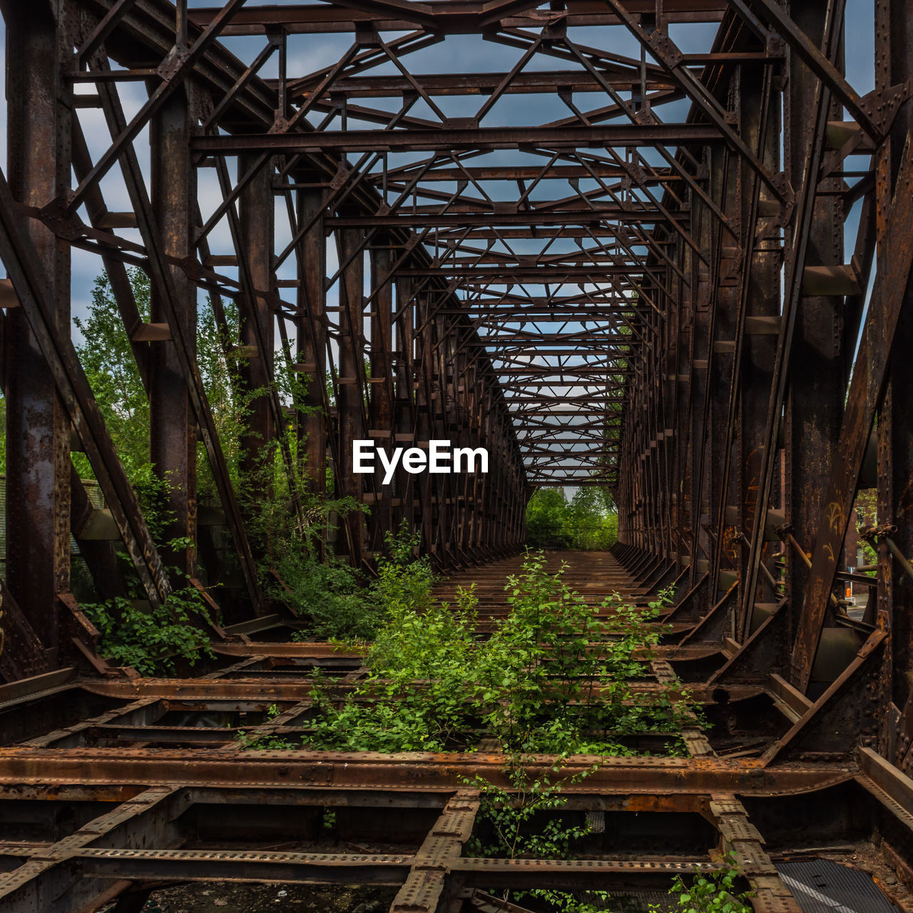 bridge, architecture, built structure, plant, no people, connection, bridge - man made structure, metal, day, nature, rusty, direction, transportation, tree, the way forward, abandoned, forest, outdoors, growth, diminishing perspective, underneath
