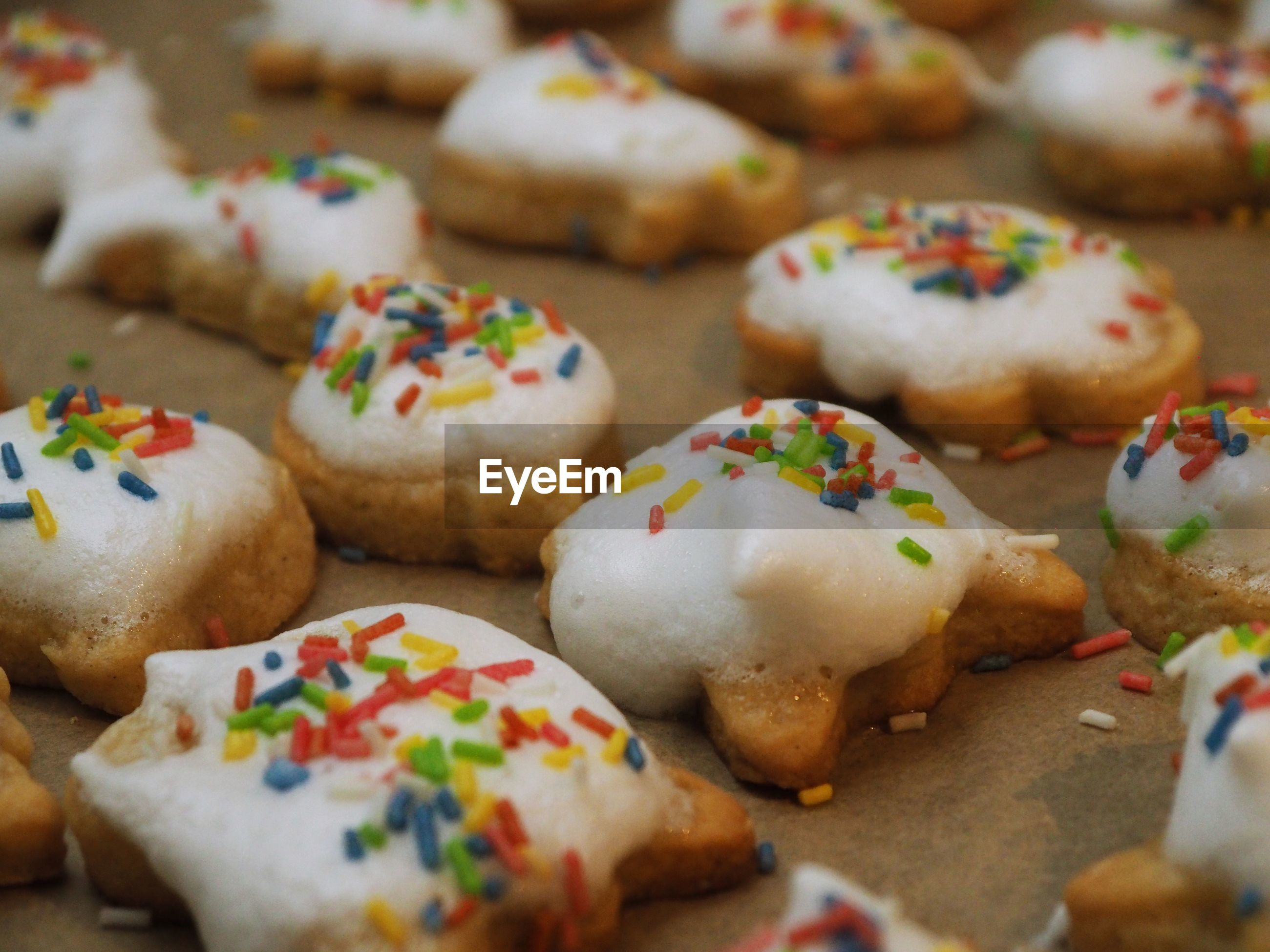 CLOSE-UP OF COOKIES AND VEGETABLES