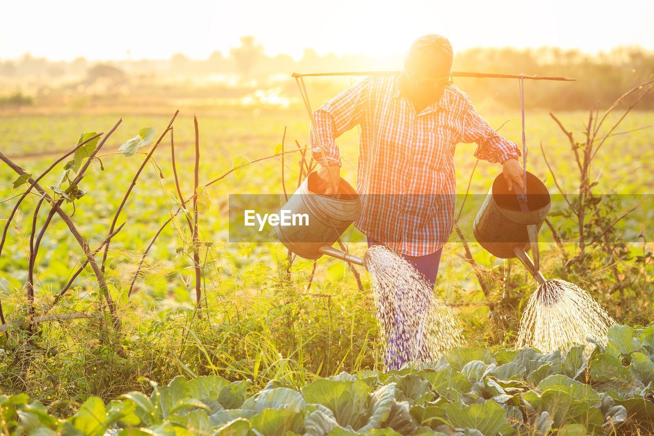 plant, field, growth, one person, agriculture, land, nature, rural scene, farm, real people, basket, beauty in nature, landscape, farmer, working, holding, standing, sky, lifestyles, outdoors