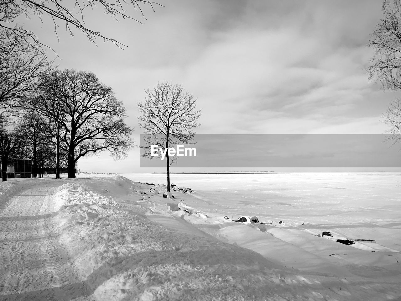 winter, cold temperature, snow, sky, beauty in nature, tree, scenics - nature, cloud - sky, nature, bare tree, plant, day, frozen, water, tranquil scene, land, tranquility, covering, outdoors, snowcapped mountain