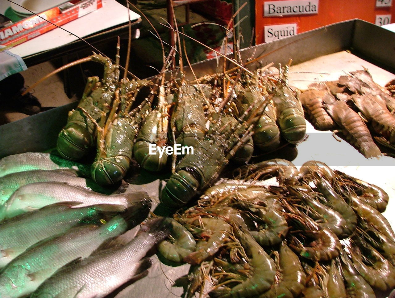 seafood, for sale, lobster, no people, high angle view, food and drink, market, retail, food, close-up, indoors, freshness, day, animal themes, healthy eating