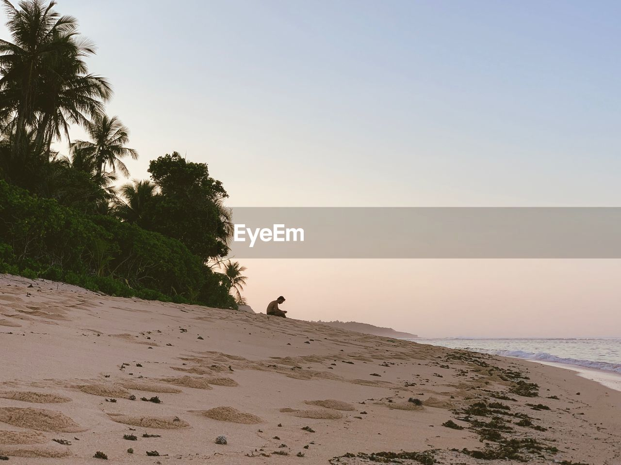 beach, land, sea, sky, water, sand, beauty in nature, tree, scenics - nature, horizon, nature, tranquility, horizon over water, clear sky, plant, tranquil scene, tropical climate, palm tree, copy space, outdoors