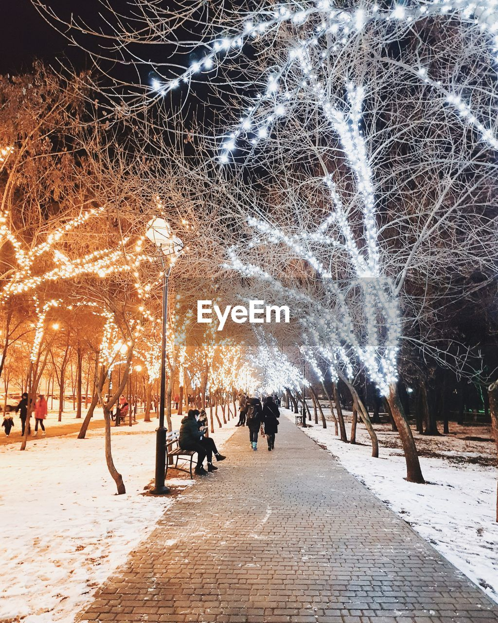 tree, real people, night, bare tree, illuminated, long exposure, leisure activity, outdoors, winter, lifestyles, full length, men, cold temperature, women, nature, sky, people