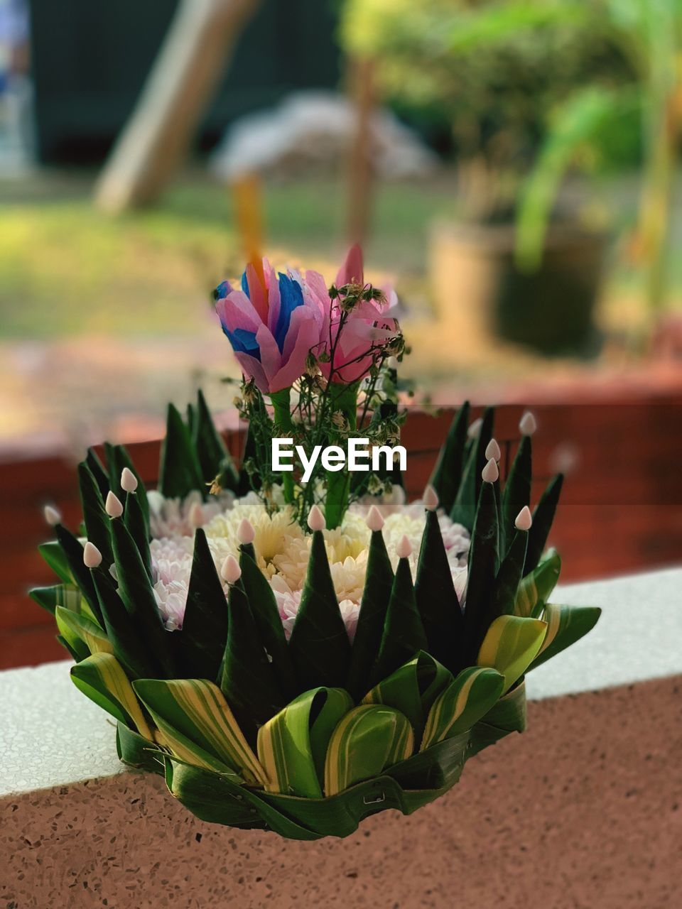 flower, flowering plant, plant, vulnerability, nature, fragility, freshness, beauty in nature, close-up, focus on foreground, petal, growth, flower head, leaf, no people, inflorescence, plant part, day, potted plant, outdoors, flower pot, flower arrangement, purple, bouquet