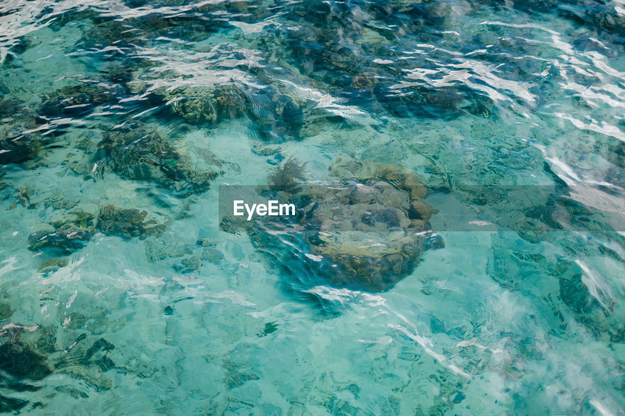 Crystal clear water with tropical coral reef under the water ripples.