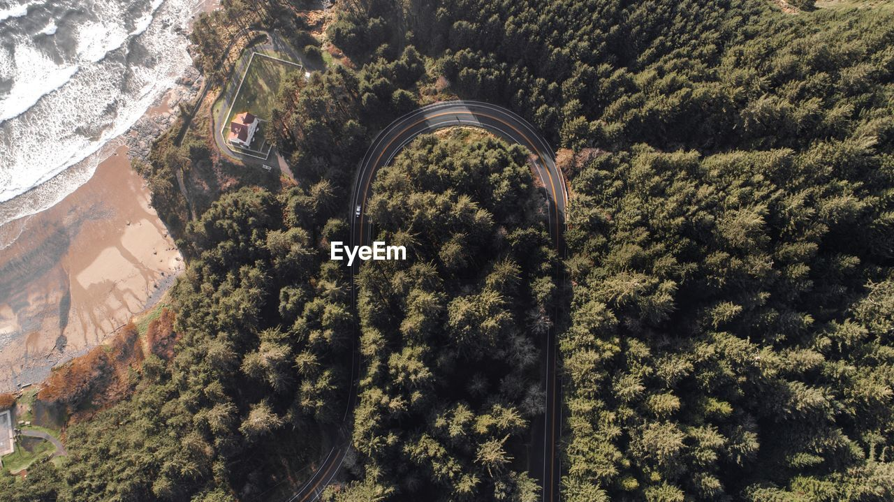 Aerial View Of Mountain Road Amidst Trees