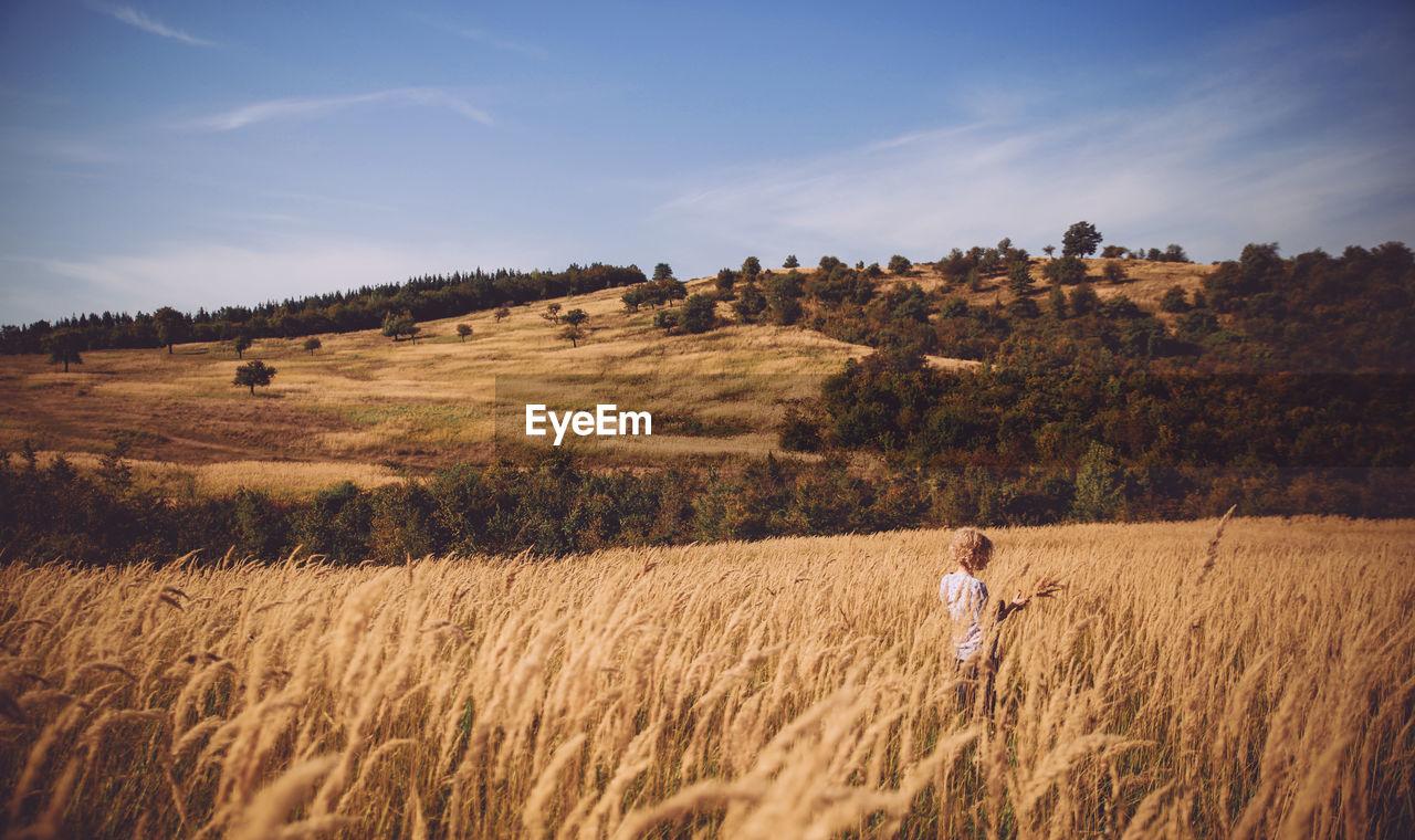 Rear View Of Woman In Wheat Field Against Sky
