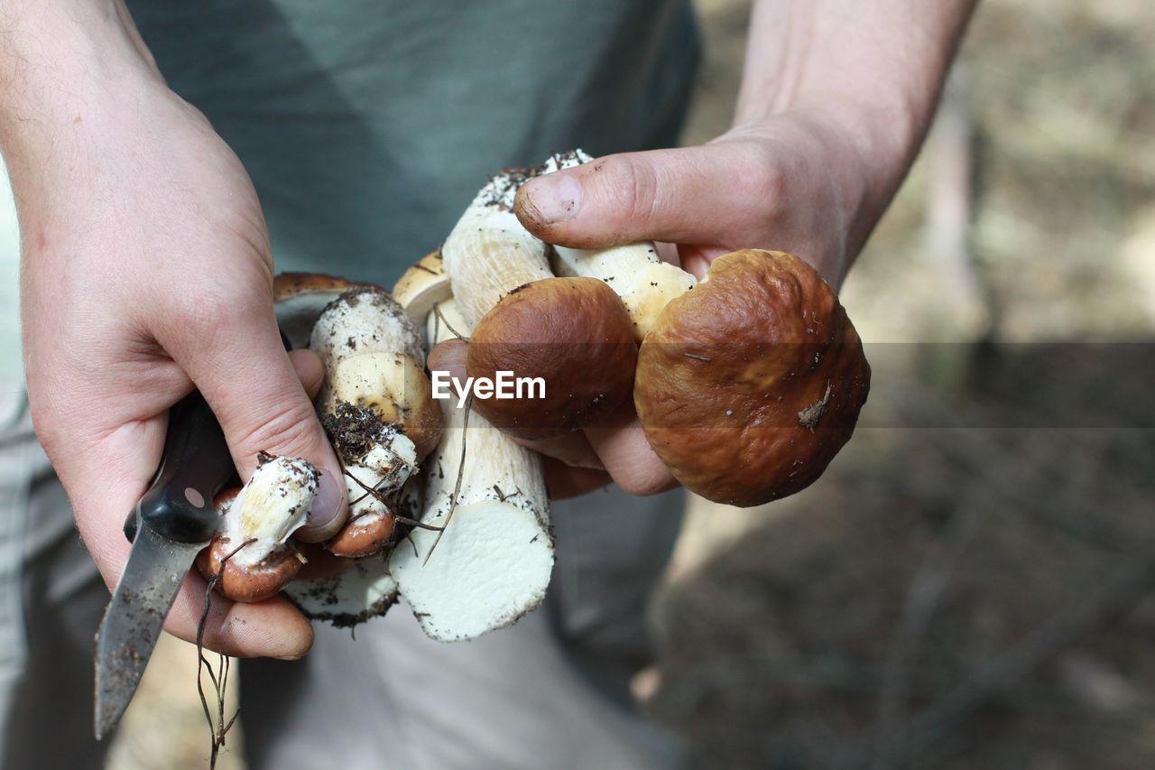 Close-Up Of Man Holding Mushroom