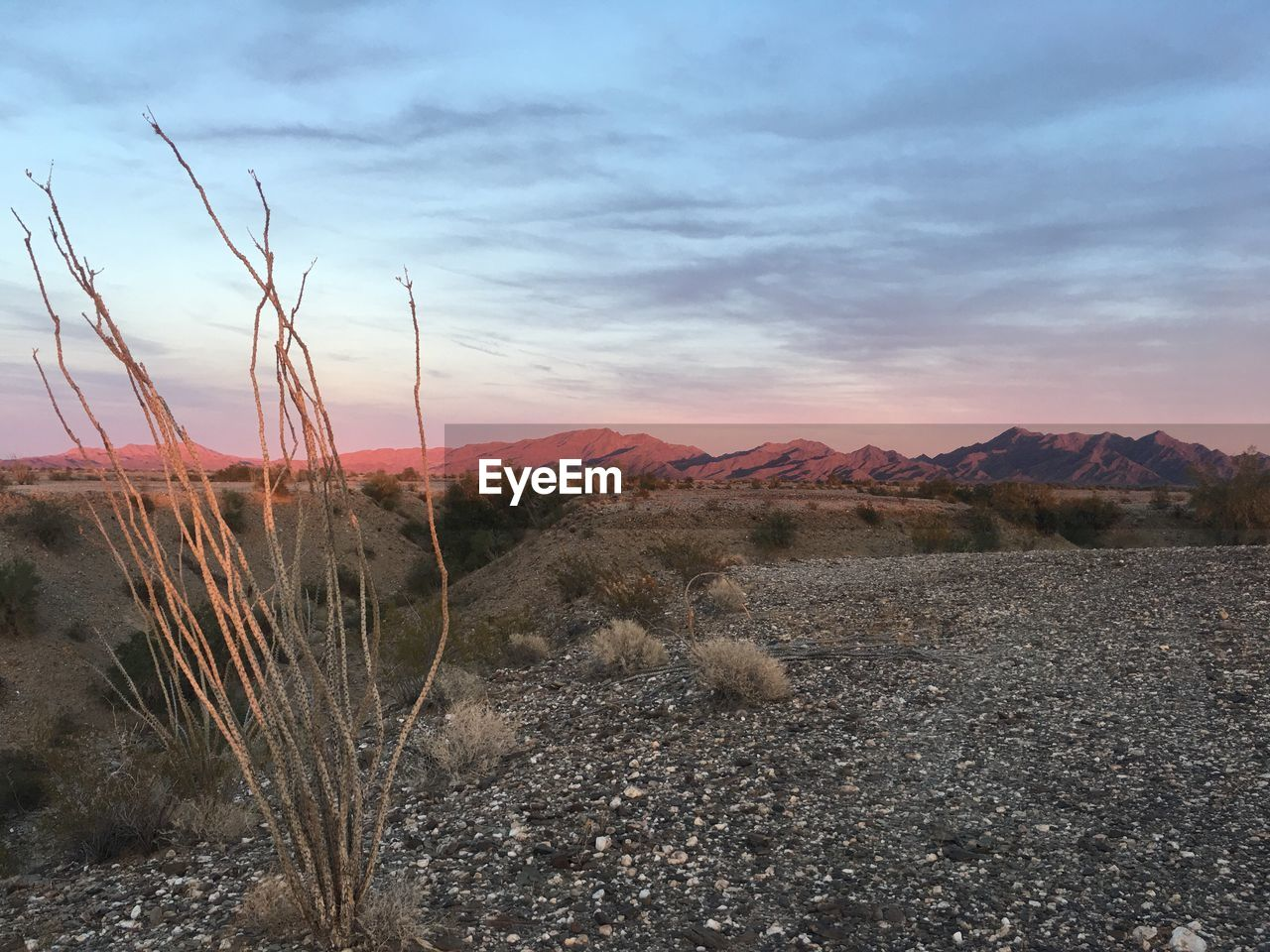 nature, beauty in nature, mountain, tranquility, tranquil scene, scenics, non-urban scene, sky, no people, outdoors, plant, landscape, cloud - sky, growth, sunset, arid climate, mountain range, day